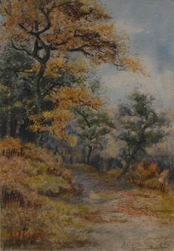 Lot 1670 - A.E. Boler (19th/20th century) Woodland Landscape signed, watercolour, 34cm x 23cm